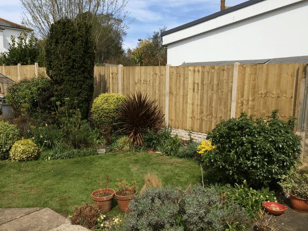 Gardening Services In Exter